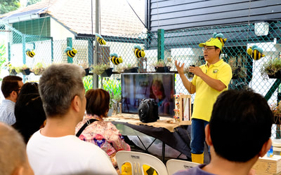 1st WBD, talks about local bees.